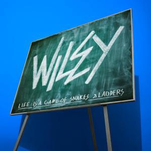 WIley-Snakes-Ladders